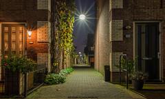 Achter de Hoven in Leeuwarden op vrijdag avond