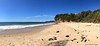 Jenny Dixons Beach looking South, Norah Head, Central Coast, NSW (Black Diamond Images) Tags: jennydixonsbeach jennydixonbeach norahhead noraville toukley centralcoast nsw beach australianbeaches iphone appleiphone7plus iphone7plus panorama appleiphone7pluspanorama iphone7pluspanorama iphonepanorama