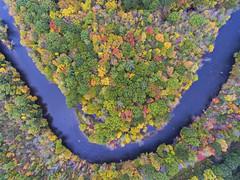 Salmon River (Matt Champlin) Tags: sunday funday aerialphotography aerial dronephotography drone drones dji iamdji djiphantom 4 phantom4 fall autumn foliage colorful beautiful fish fishing salmon steelhead life nature 2017 altmar pulaski cny ny