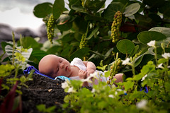 Nature and Nurture (Island Impressions) Tags: baby infant outdoors sleeping newborn