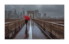 Red (Nico Geerlings) Tags: skyline skyscrapers brooklyn brooklynbridge lowermanhattan newyorkcity nyc ny usa ngimages nicogeerlings nicogeerlingsphotography financialdistrict rain raining rainy hurricane clouds mood atmosphere
