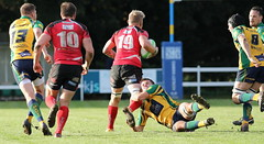 840A5659 (Steve Karpa Photography) Tags: henleyhawks henley redruth rugby rugbyunion game sport competition outdoorsport