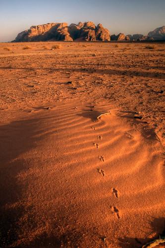 jordan wadi rum sunset