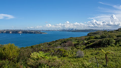 Sydney from North Head (mcgin's dad) Tags: australia manly northhead sydney canon450d