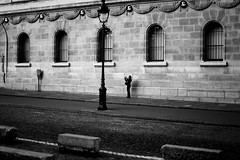 By photographing (pascalcolin1) Tags: paris femme woman photographiant photographe photographer mur wall fenetres windows photoderue streetview urbanarte noiretblanc blackandwhite photopascalcolin 50mm canon50mm canon