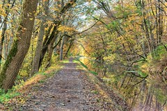 erwinna towpath (dfbphotos) Tags: 2017 october fall collections reflections water nature canal erwinna buckscounty places towpath pa usa