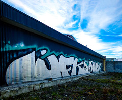 Clouds (Steve Taylor (Photography)) Tags: graffiti tag building blue green white newzealand nz southisland canterbury christchurch city corrugated perspective cloud sky bird pigeon