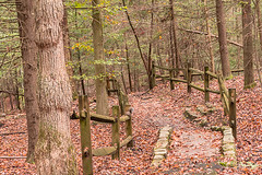 A Walk Trhough the Woods (Back Road Photography (Kevin W. Jerrell)) Tags: baysmountainpark kingsport tennessee autumn nikond7200 fall wood autumncolors pathway backroadphotography railfence