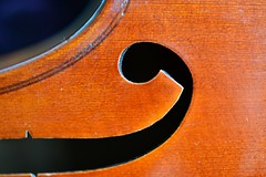 F-hole. (Holly ann Ivy) Tags: macromonday members choice violin musical instrument