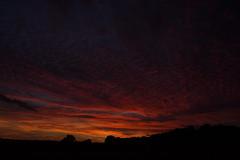 Dusk (betadecay2000) Tags: sunset sun abendrot evening bluehour rood red rot roughe pink himmel sky heaven sonnenuntergang abendstimmung german germany deutsch deutschland niemcy münsterland darfeld rosendahl rosendahldarfeld