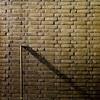 (Nico_1962) Tags: leica m9 zeiss planar carlzeissplanar vierkant wall muur brick baksteen geel minimal minimalism minimalisme square nederland thenetherlands dutch leicame kleur color colour herfst fall autumn