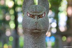 Look Into My Eyes (ONLY-JAPAN-PHOTOGRAPHY) Tags: 2014 2015 2016 ancient buddhism best culture d610 green honshu japan japón japani japon japanese nature nihon nikon nippon red shintoism shinto summer tradition travel travelling view world 日本 本州 일본