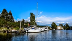 Once upon a Riverbank (Christie : Colour & Light Collection) Tags: sail boats sailboats pittmeadows river alouetteriver dock wharf moored mooring water boathouse boatshed bc canada outdoor