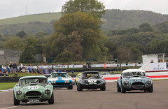 Fighting Cobras (NaPCo74) Tags: ac cobra rac tt royal automobile goodwood revival 2017 lord march sussex chichester etype lightweight corvette caroll shelby historic classic racing car legend motor circuit celebration stingray canon eos 700d lowdrag