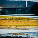 Chemung River watershed in Steuben County, N.Y. - {description}