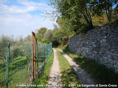 S1T-S1trail-la-corsa-della-bora-anello-sorgente-santa-croce__0045