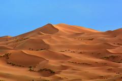 Dunas del Gobi. (Victoria.....a secas.) Tags: mongolia gobi desierto desert dunas dunes