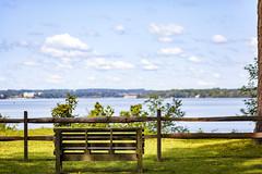 how it once was (Satirenoir) Tags: virginia summer masonneckstatepark masonneck park forest hike hiking bench