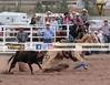 Rodeo Cowboy/CowGirl & Country (Lalo Arballo) Tags: rodeo cowboy horse vaquero
