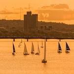 Charles River Sunset (Boston MA) thumbnail