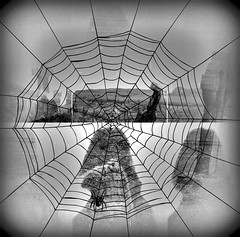 As Seen Through the Halloween Web bb (soniaadammurray - Off) Tags: digitalphotography manipulated experimental collage abstract blackwhite halloween scary spider web cemetry ghosts selfportrait meagainmonday monochrome