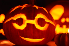 Halloween Potter! (suekelly52) Tags: halloween harrypotter pumpkin bright harvest