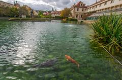 The world 39 s best photos of prague flickr hive mind for Jardin wallenstein