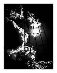 lightropes (seba0815) Tags: ricohgrdiv grdiv grd monochrome lightropes light sun sky clouds contrast dark bw blackwhite black white bianco nero blanc noir schwarzweis czarnobiale sea sailing poland polska sopot boat trip vacation summer summerlights mood seba0815 ropes silhouette