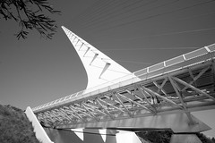 Pointy Shape (asiantango) Tags: architecture art artmuseum california item lens lookup object out outdoor outdoors outside outsides redding samyang12mmf2ncscs shastacounty sundialbridge sunny weather