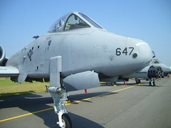 "Fairchild Republic A-10 Thunderbolt II 4 • <a style=""font-size:0.8em;"" href=""http://www.flickr.com/photos/81723459@N04/37486881811/"" target=""_blank"">View on Flickr</a>"