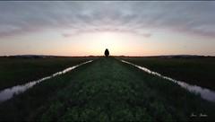 Untitled (saveriosalvadori) Tags: natura nature sunset pisa campagna countryside