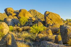 Boulders in the morning light (doveoggi) Tags: 8851 scottsdale arizona mcdowellsonoranpreserve desert boulders morning mountain brush