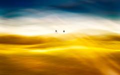 The dreamer's dream (Ans van de Sluis) Tags: thedreamersdream dream dreamer ansvandesluis art fineart people portrait couple surreal surrealism landscape nature sky clouds sunset beauty abstract