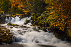 Cascades on Nantahala River (Reid Northrup) Tags: river tree trees rock rocks forest cascades water landscape longexposure whiteoakfalls reidnorthrup nikon autumn color leaves nature stream rrs