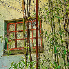 Bamboo View (creepingvinesimages) Tags: hww window bamboo leaves reflection glass rustic outdoors texture