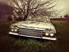 working class stiff... (BillsExplorations) Tags: abandoned abandonedcar chevrolet biscayne workingclass economy cheap decay old vintage forgotten neglected discarded rust oldcar 1960s impala belair field abandonedillinois retired