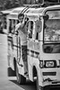 Standing Room Only (FotoGrazio) Tags: asian bohol filipino man philippines pinoy streetphotography tagbilaran visayas waynegrazio waynesgrazio blackandwhite composition dangerous fotograzio hangon holdtight male motion movement people standingroomonly stayingcool streetportrait streetscene taxi transportation van youngman