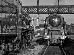 MRC2017-41 (Dreaming of Steam) Tags: 6233 46203 46233 duchess duchessofsutherland heritage heritagerailways lms midlandrailwaycentre princesscoronation princesscoronationclass princessmargaretrose princessroyalclass railway stainer steam steamengine sutherland train vintage engine locomotive railroad smoke steamlocomotive