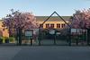 Japanische Schule (Neue Eule) Tags: frankfurtammain schule bäume gemany