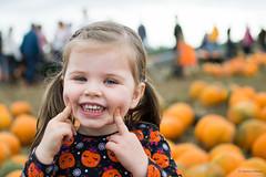 Cheeky little pumpkin (C_Calladine) Tags: pumpkinpicking dayout orange autumn pumpkin portrait halloween