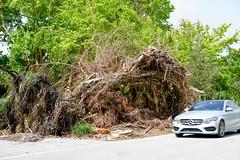 Aftermath of Hurricane Irma (Dagonite) Tags: hurricane irma miami florida storm damage