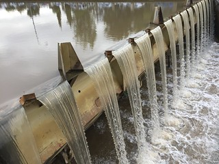 No te fies de las aguas mansas  - Do not trust calm waters
