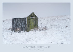 Winter In Scotland (.Brian Kerr Photography.) Tags: scotland scottishlandscapes scottish scotspirit scottishborders sony snow winter weather stormbrian hut shed landscapephotography landscape a7rii availablelight nature naturallandscape natural outdoor outdoorphotography opoty cold frozen frosty freezing leadhills pigeon bird grass briankerrphotography briankerrphoto sky building