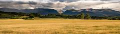 Cairngorms from Coylumbridge (Peter Quinn1) Tags: panorama cairngorms coylumbridge plateau northerncorries cairngormsnationalpark scotland speyside mountains cairngormmountains