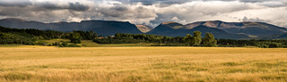 Cairngorms from Coylumbridge