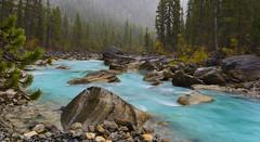 Yoho River after Rain (Yoho NP, BC, Canada) (Sveta Imnadze) Tags: fog mist yohoriver yohonp bc canada