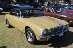 1976 Jaguar XJC (jeremyg3030) Tags: 1976 jaguar xjc cars seriesii british 42