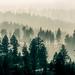 Smoky+Mountains+in+Montana