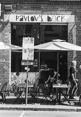 Bendigo, Collingwood & Melbourne (alistairkennedynowlookhear) Tags: orientalseagull400 nikonf6