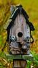 Bookings now accepted for next season - 'CHEAP' - (Explored 10/31/17). (Bob's Digital Eye) Tags: 2017 birdhouses bobsdigitaleye canon canonefs55250mmf456isstm deadwood depthoffield flicker flickr organicpattern organicstructure organictexture organictextures t3i wood